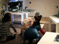 Izba čítania Dierožrút ako scénické laboratórium